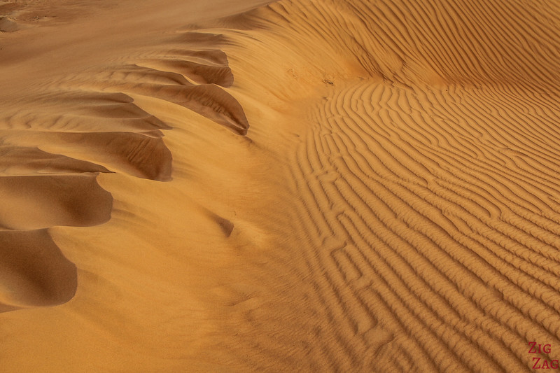 Sand texture and lines - Wahiba Sands - Oman 4