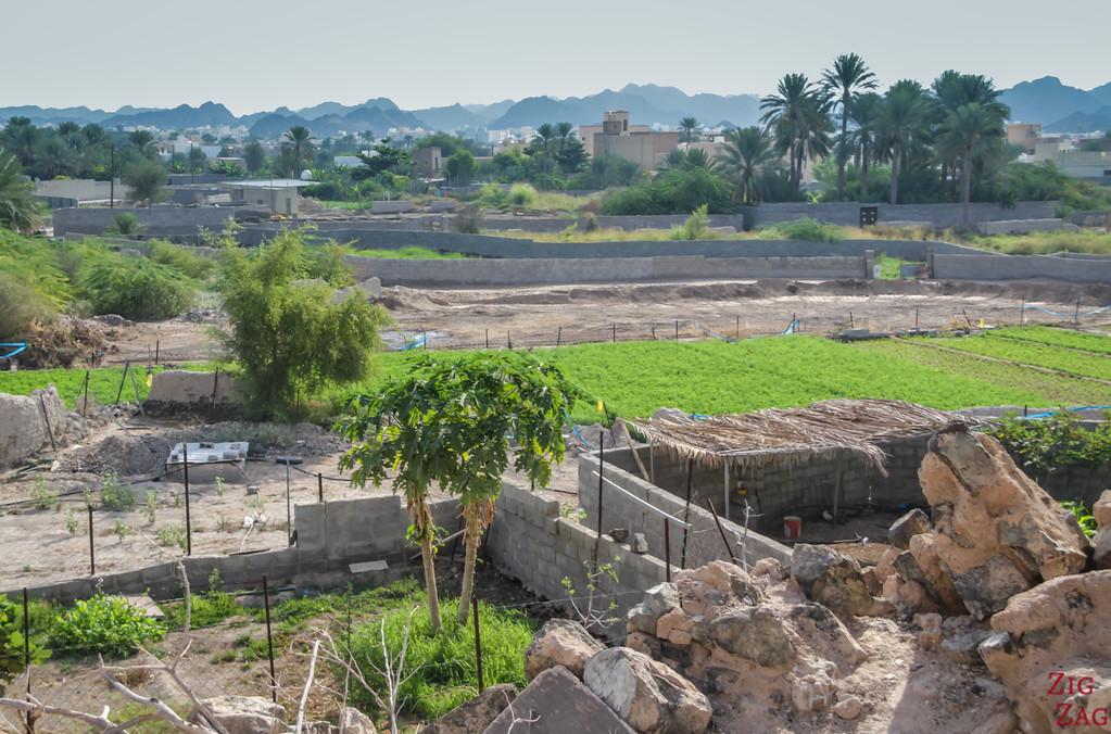Al Munisifeh, Oman - view