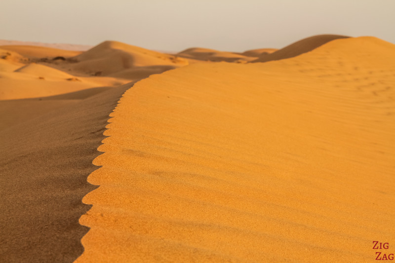 Dunes at Sunrise - Wahiba Sands - Oman 10
