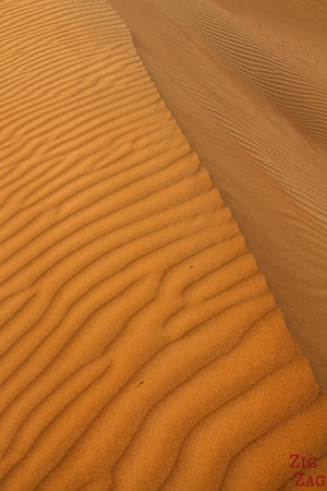 Dunes at Sunrise - Wahiba Sands - Oman 4