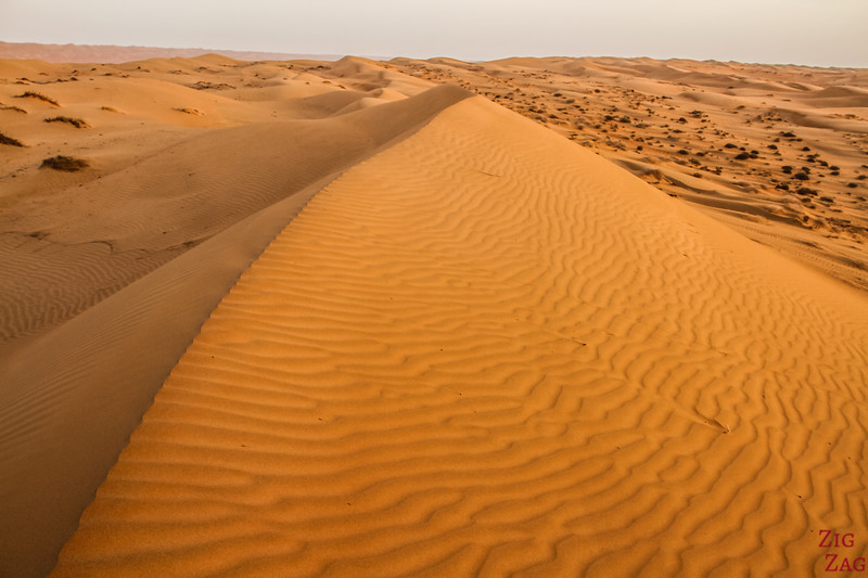 Dunes at Sunrise - Wahiba Sands Sunrise - Oman 5