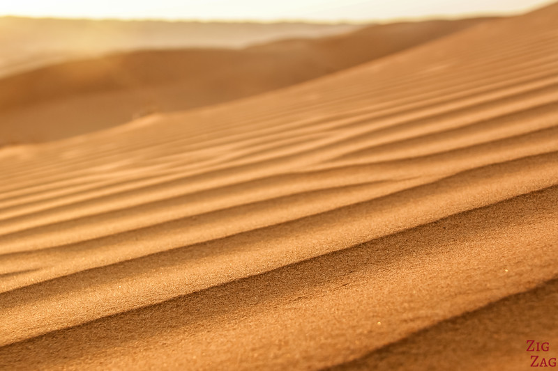 Sand texture and lines - Wahiba Sands - Oman 5