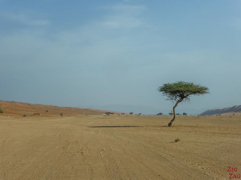 Conduire dans Wahiba Sands Oman 4