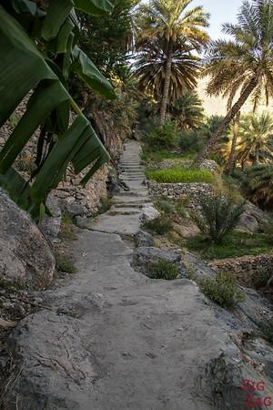 village Misfat Al Abriyeen - plantation 2