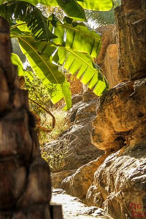 Misfat Al Abriyeen village - Oman 3
