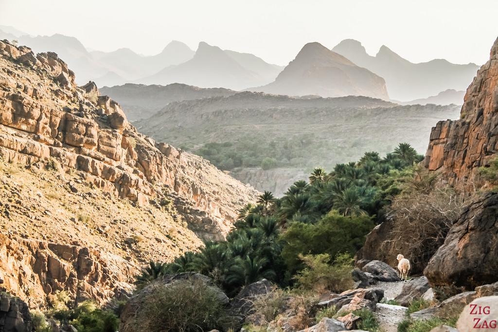 Misfat Al Abriyeen randonnée 4