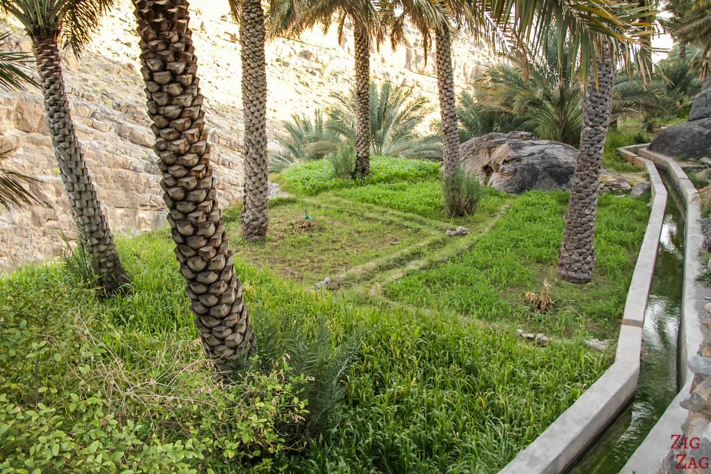 W9 randonnée Misfat al Abriyeen Oman 2