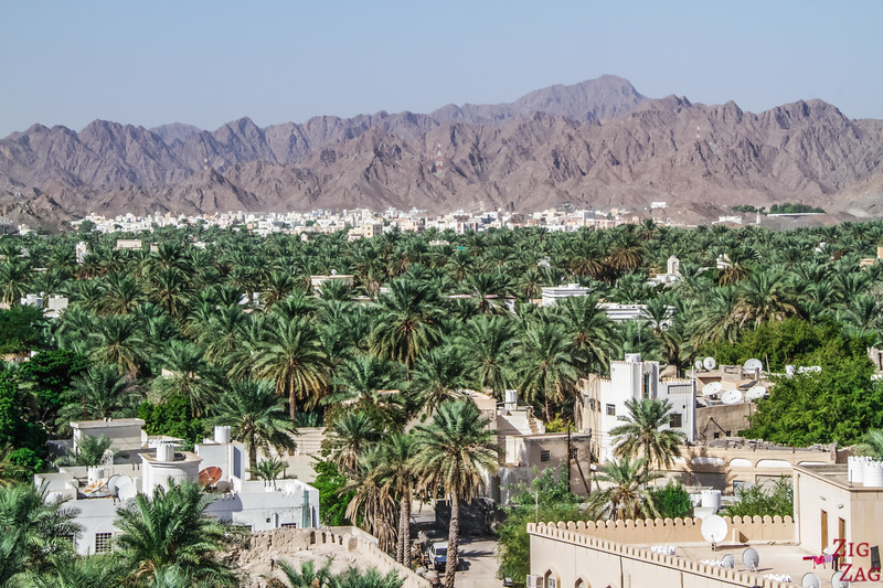 Nizwa Fort, Oman - view of the oasis