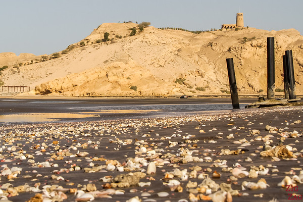 Where to go in Oman - Sohar North Coast