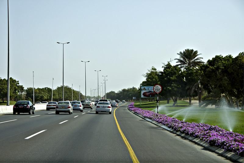 Roadside watering, Sultan Qaboos Highway, Muscat.