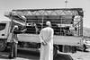 Buy my cattle, Nizwa, Oman
