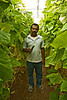 Hari with cucumber, the farm.