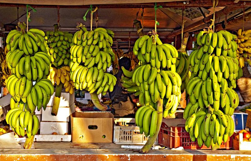 Bananas, fruit stand, Salalah.
