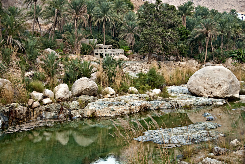 Home in grove of palm trees, Wadi Tiwi.