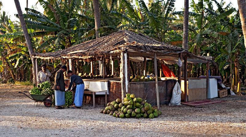 Fruit Stand, Salalah.