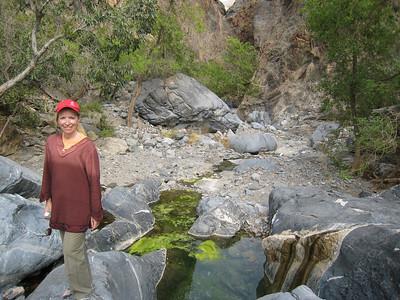 Pond in Snake Gorge