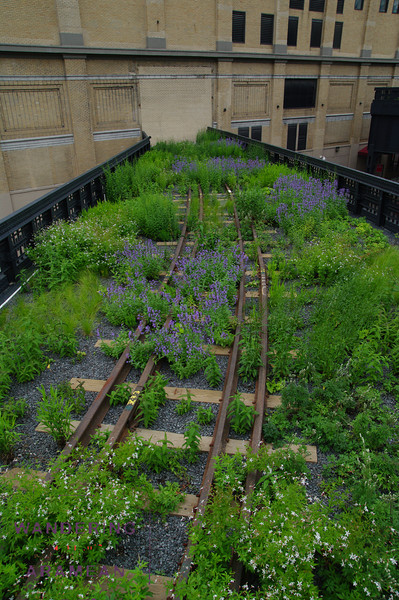 They worked the rail theme into just about evverything, including the plantings
