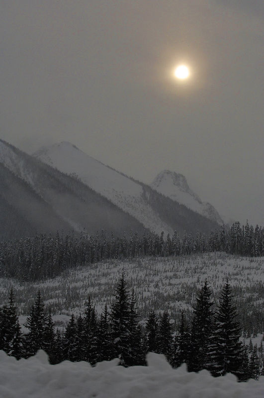 """This was during the morning! Another """"drive-by"""" shooting! Here, we are past Pemberton and on the early part of the Duffy Lake Road."""