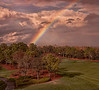 Grand Vista Resort - Orlando - Rainbow View