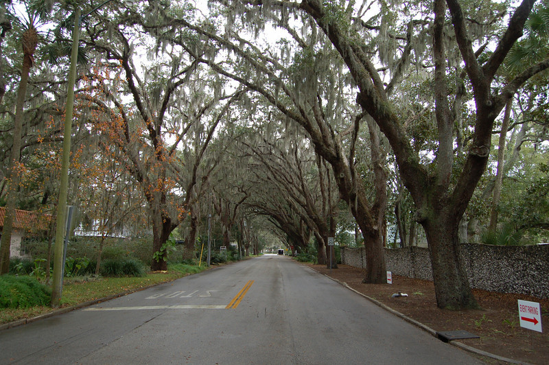 a great looking street just outside the fountain of youth