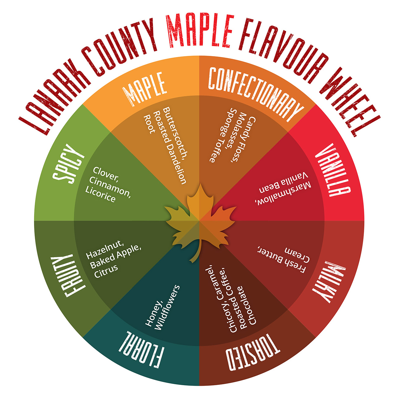Lanark County maple flavour wheel. Discover the 13 best things to do in Lanark County.