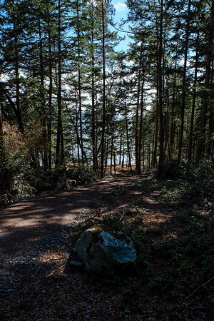 Orcas Island San Juans trip to visit B, T, C, and J, Oct. 2016