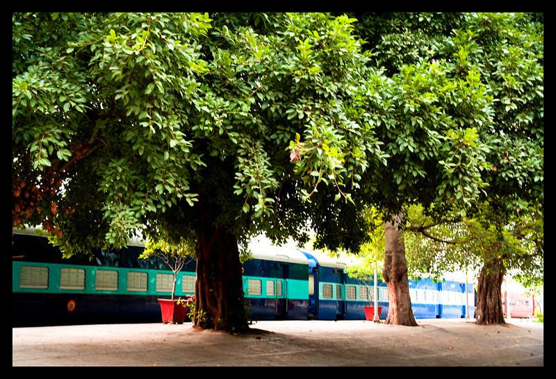 At New Delhi Railway Station, just before boarding the Bhopal Shatabdi at 6.15am.