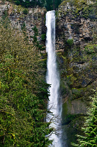Oregon -14