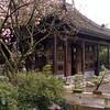 Japanese Garden - Portland, OR