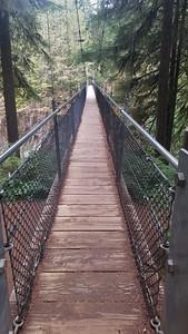 Drift Creek Falls Bridge