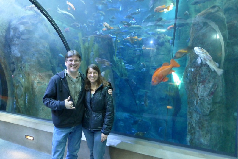 Us in the fish tank