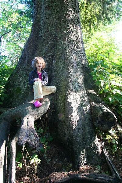 Small kids fit really well into big trees.