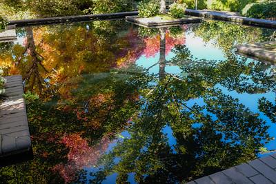 At the Oregon Garden, near Salem.
