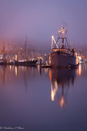 Newport Harbor2