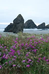 Ashland-Coast Trip_20130807_0235