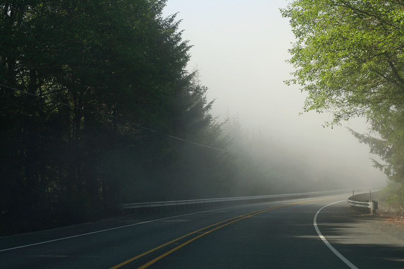 Highway 101 fog along the Oregon coast.