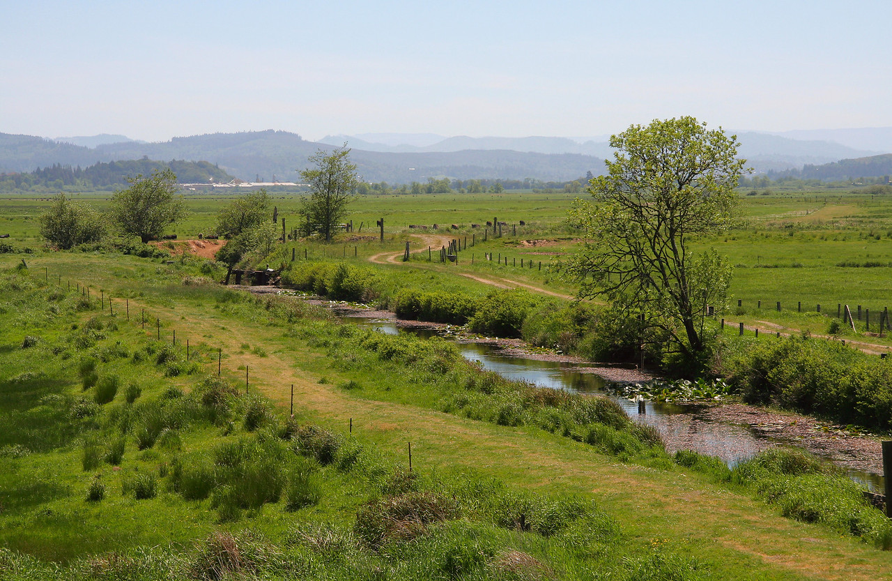 The Coquille River Valley, Oregon.