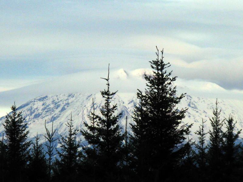 Mount Ranier as seen from Mount St. Helens