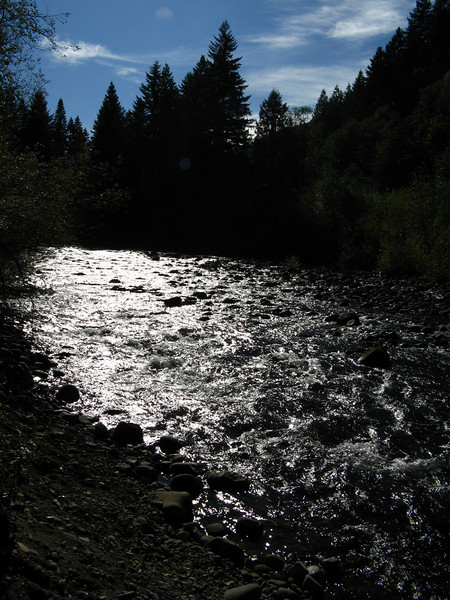 Trail from condo to Salmon River