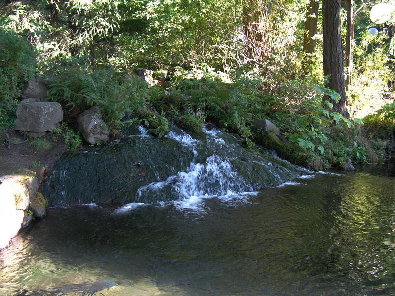 Fish Hatchery at Bonneville Dam