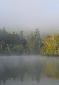 0084 River Morn Mist