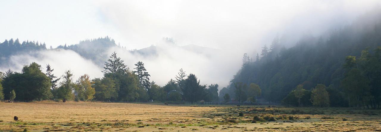 0015 Morning Fog