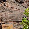 Lava Butte, Cinder Cone near Sun River, OR