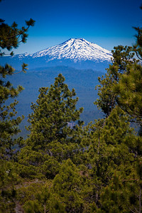 Mount Bachelor from Lava Butte
