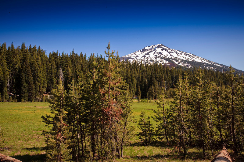 Mount Bachelor from Todd Lake, Cascade Lakes Scenic Highway