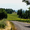 Dundee Wineries, Oregon