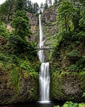 Oregon & Washington States