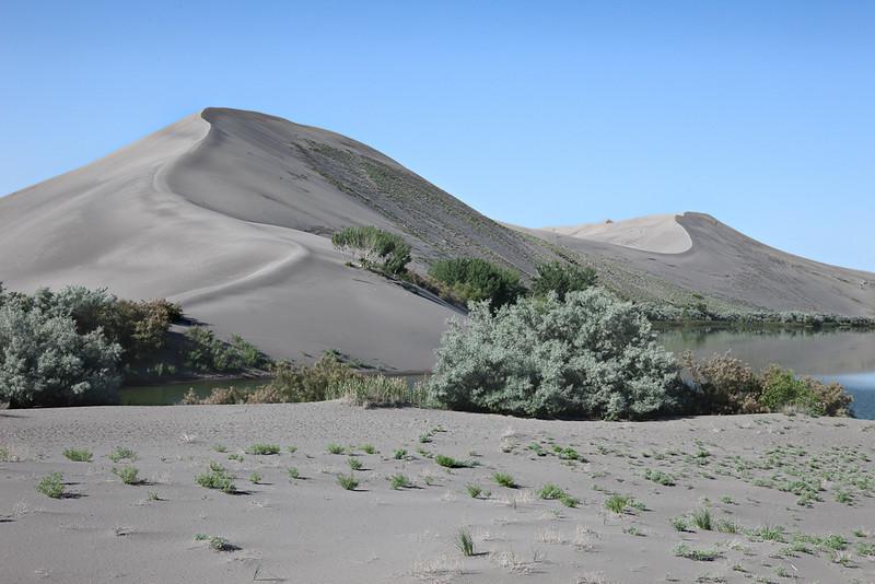 Bruneau Sand Dunes