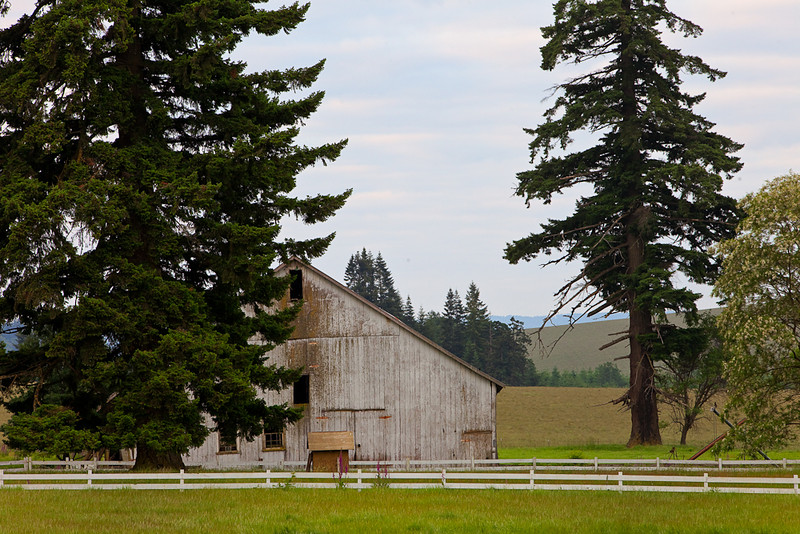 Landscape, Salem, Oregon