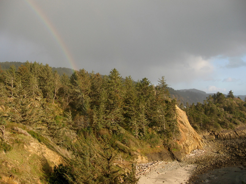 Looking south from Cape Arago.